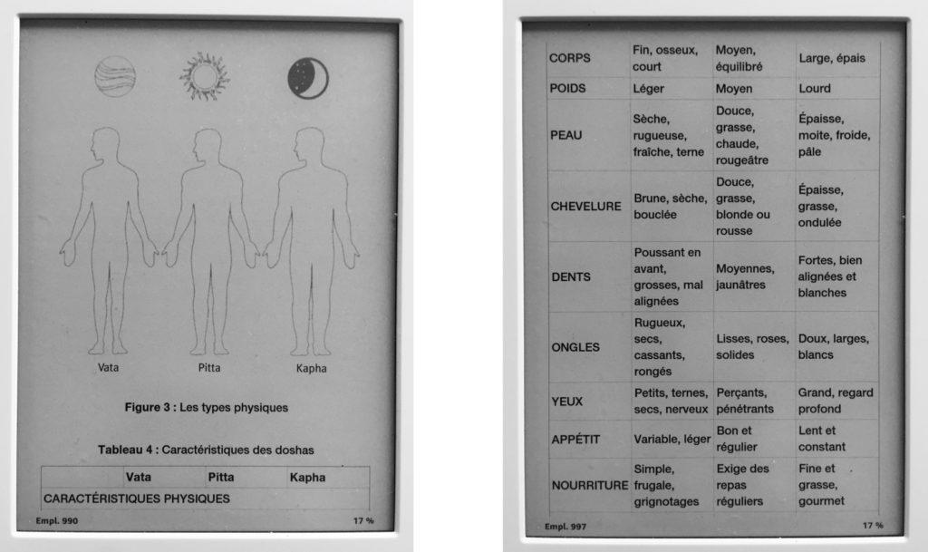 ayurveda médecine ayurvedique santé inde